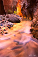 Backcountry,Fall, Narrows,Southwest Trip,Zion National Park, Utah, UT, Canyons