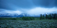 Grand Tetons National Park, Willow Flats, Wyoming