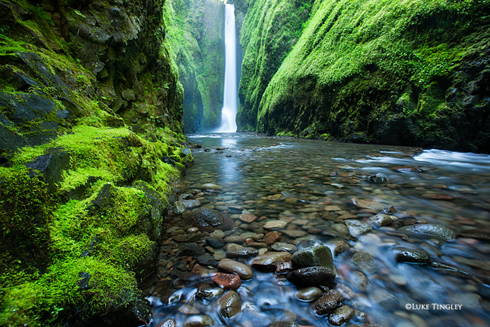 A slot canyon covered in moss with an amazing waterfall at the end rewards hikers willing to do some wading to reach their goal...