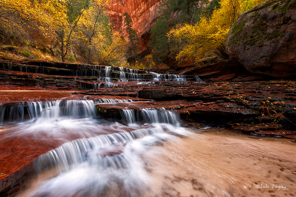 Backcountry,Fall, Left Fork, Subway,Southwest Trip,Zion National Park, Utah, UT, Canyons, photo