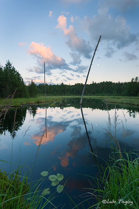 BWCA, Boundary Water Canoe Area, Northern Minnesota, Minnesota, Summer, Sunset, Backcountry, photo