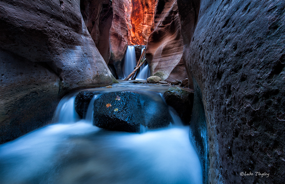Backcountry,Fall, Southwest Trip,Zion National Park, Utah, UT, Canyons