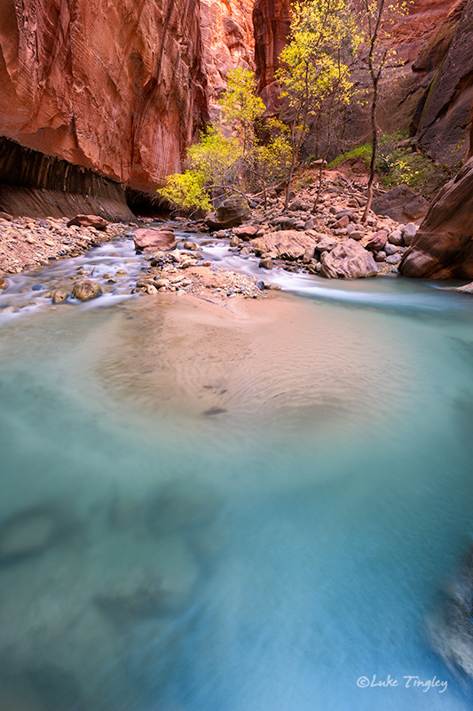 Backcountry,Fall, Narrows,Southwest Trip,Zion National Park, Utah, UT, Canyons, photo