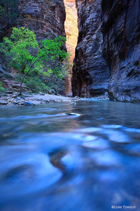 Narrows, Zion National Park, Utah, blue, orange, slot canyon, southwest, united states, canyonlands, slots, UT