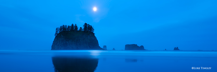 Second Beach, Beach, Washington, WA, photo
