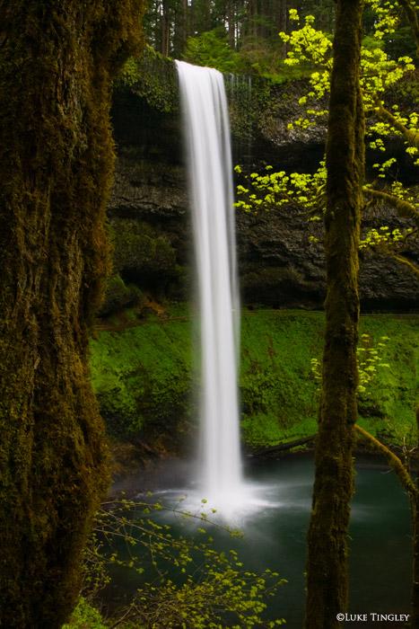 Silver Falls State Park, Salem, Oregon, photo