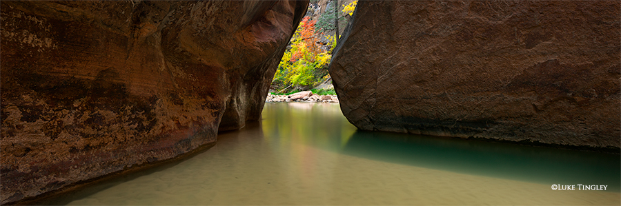 Fall, Zion, National Park, Utah, Virgin River, Narrows, The Narrows