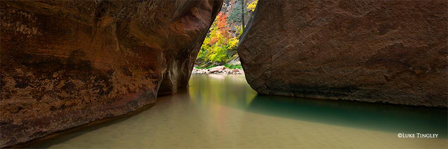 Fall, Zion, National Park, Utah, Virgin River, Narrows, The Narrows, photo