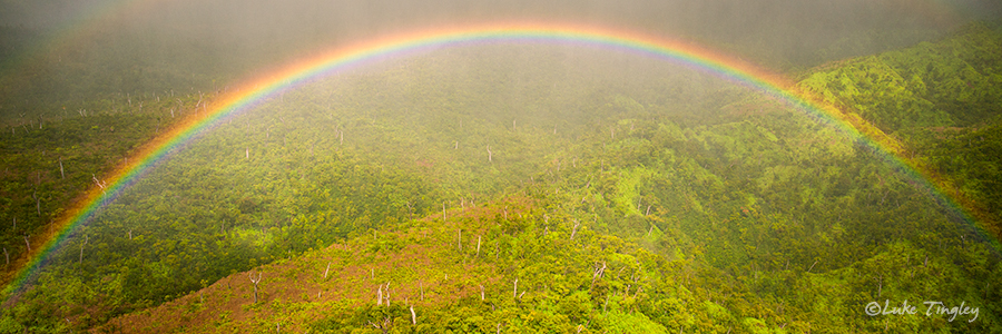 Heli,Helicopter Flight,Kauai,Mid-Day,Napali Coast,Princeville,Rain, Rainbow, Doors Off, Hawaii, photo