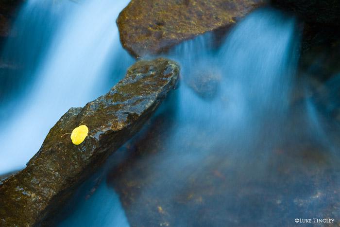Lost Lake Slough, Colorado, Fall, photo