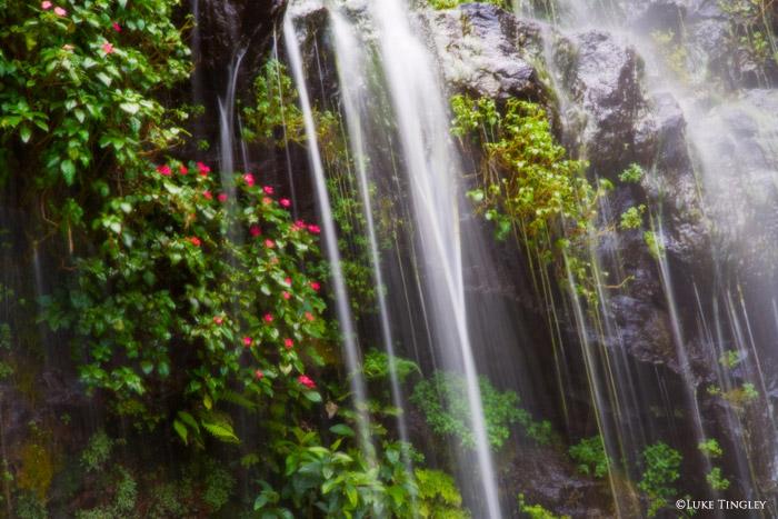 Hawaii, Road To Hana, photo