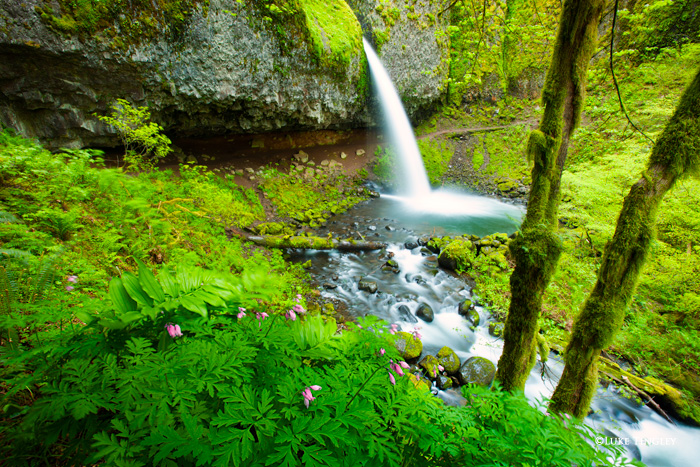 Ponytail Falls, Columbia River Gorge, OR