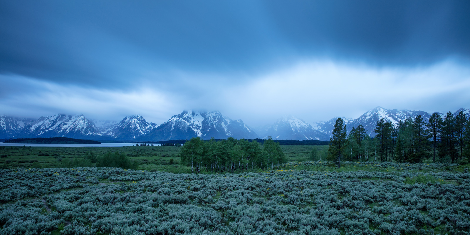 Grand Tetons National Park, Willow Flats, Wyoming, photo