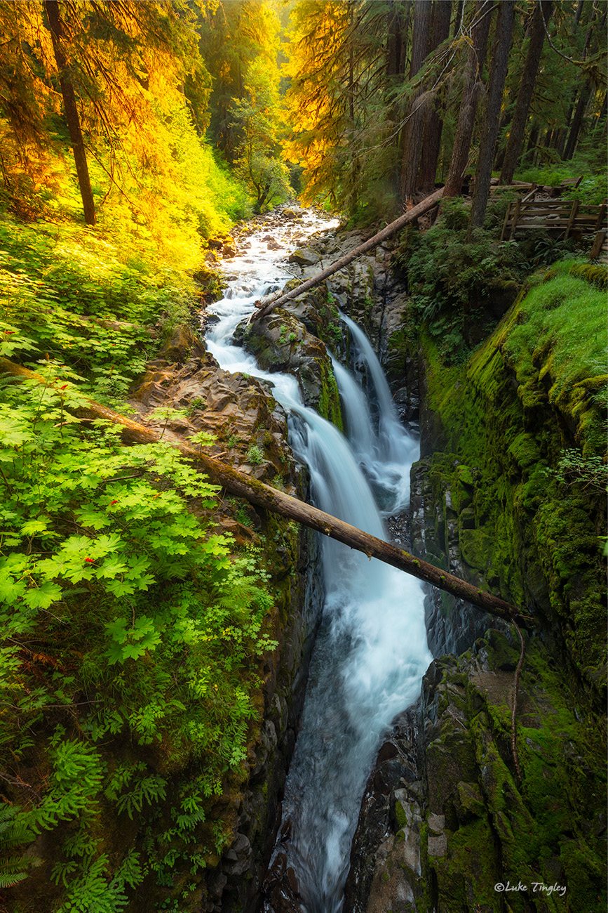 2018, Sol Duc Falls, Washington, photo